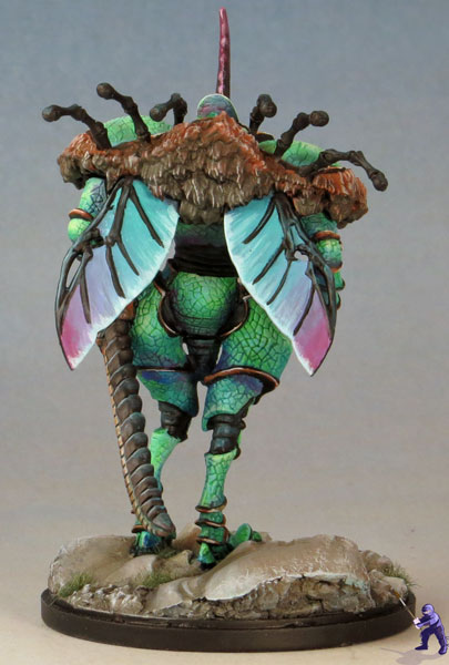 Dung-Beetle-Knight-3