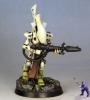 Exodite-wraithguard-1