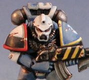 Other Space Marines