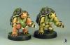 sd-turtles-2