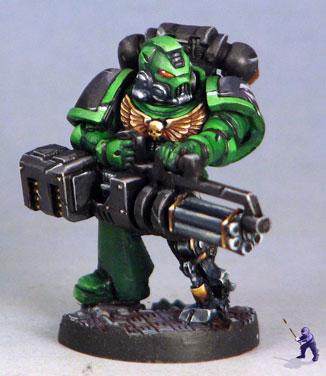 salamander-2