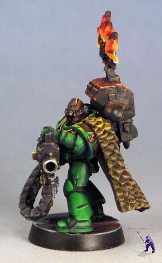 salamander-7